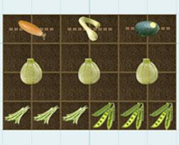 Planting Options