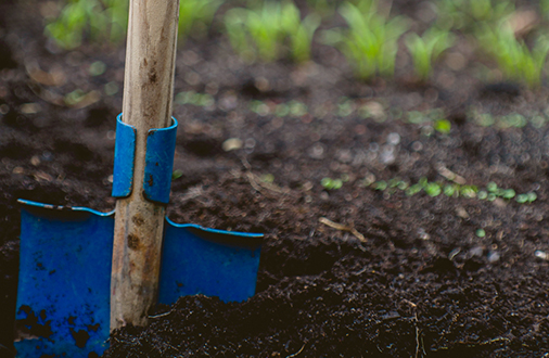 Preparing your garden for planting